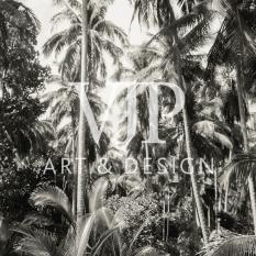 _palms