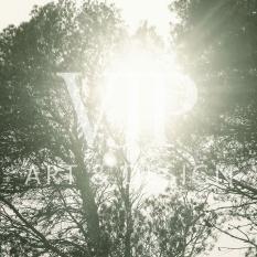 _treelight